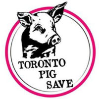 Toronto Pig Save